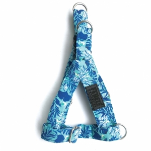 Arnés Hojas Azules